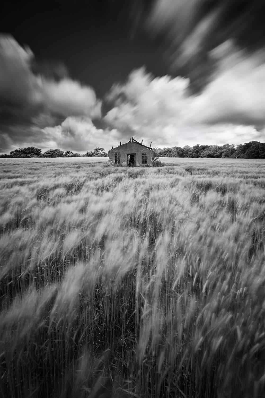 Still standing - Martlesham, Suffolk