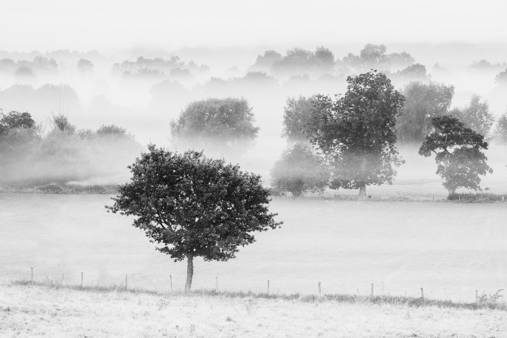 Mist in the valley - Dedham, Essex