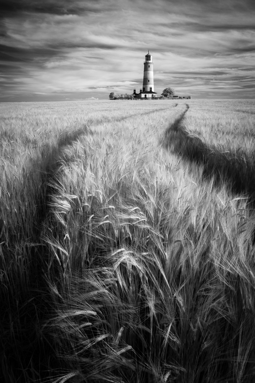 Making tracks III - Happisburgh lighthouse