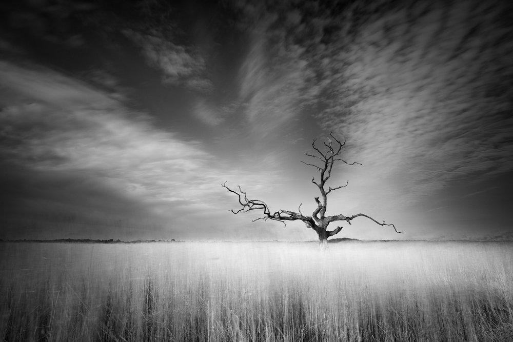Ghostly - Iken, Suffolk