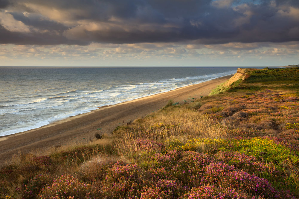 The cliffs at Dunwich Heath, Suffolk