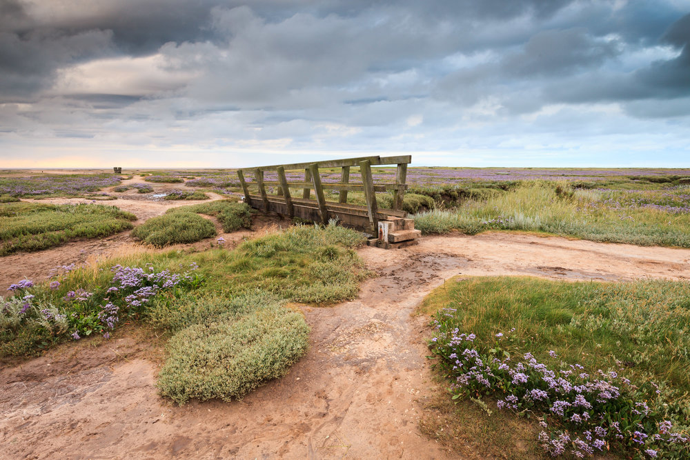 The saltmarsh at Stiffkey, Norfolk