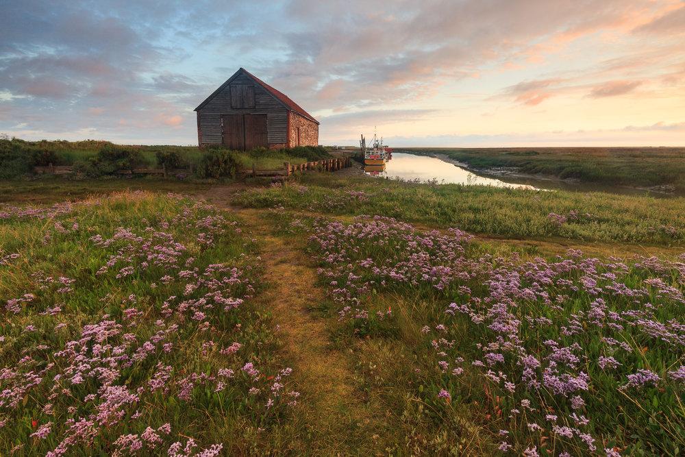 Summer on the marsh - Thornham, Norfolk