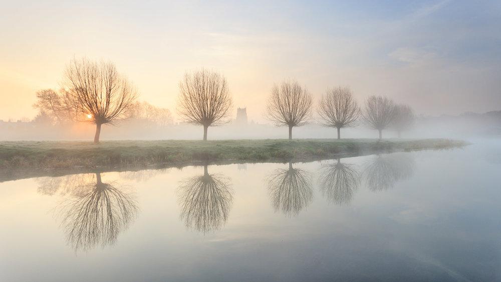 Tree lined - Sudbury, Suffolk