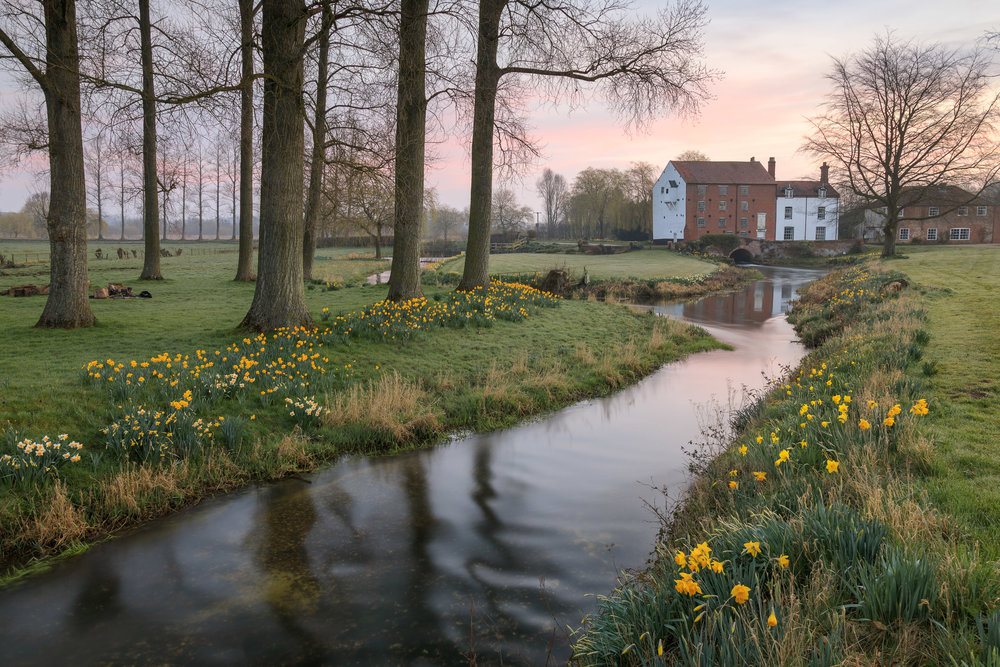 Spring at Bintree Mill, Norfolk