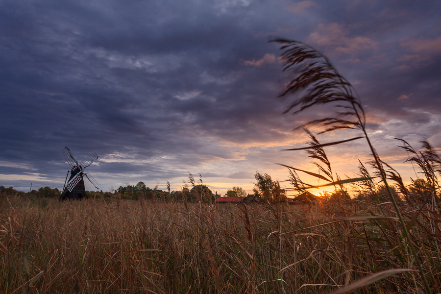 The windpump at Wicken Fen, Cambridgeshire
