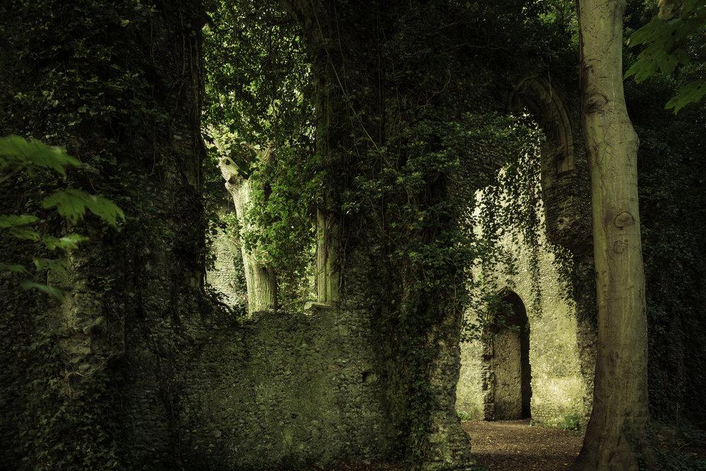 Overgrown - St Mary's Church
