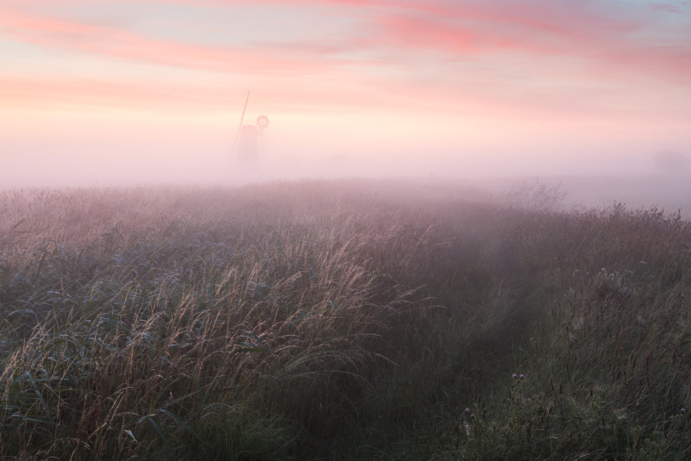 Halvergate marshes in the mist