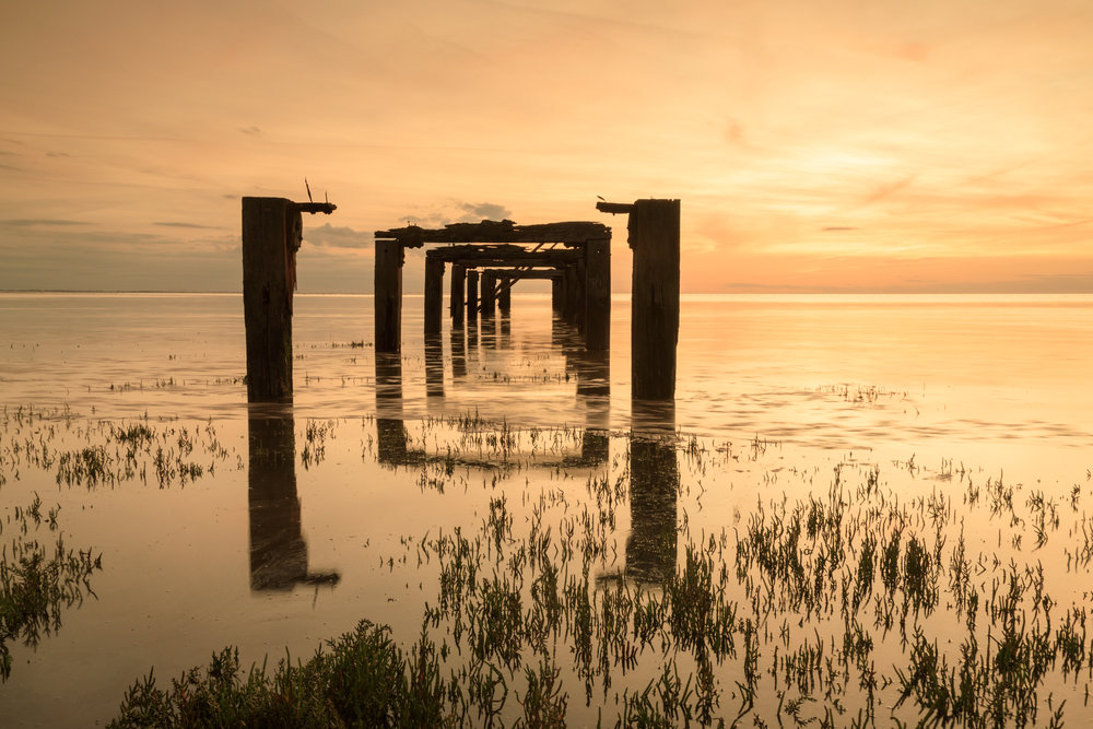 Golden light at Snettisham, Norfolk