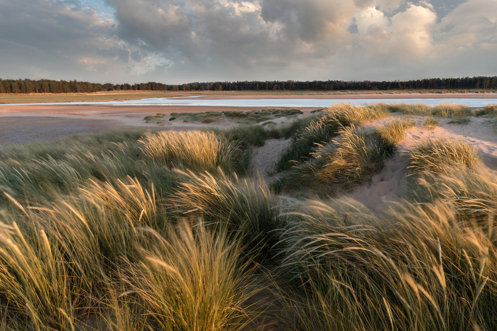 Last light at Holkham, Norfolk