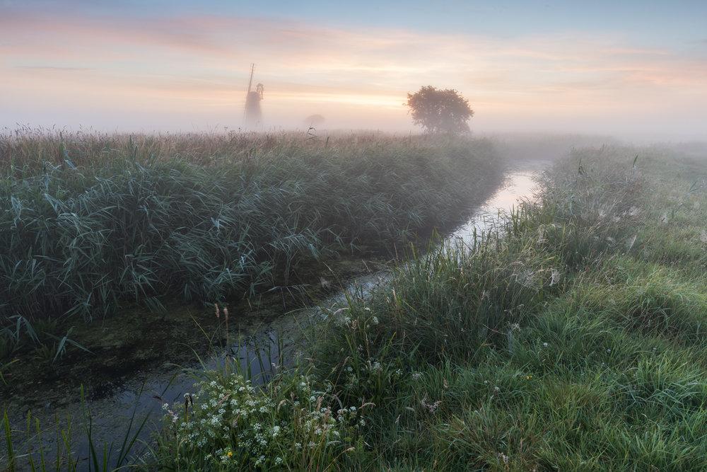 Through the mist - Halvergate Marshes, Norfolk