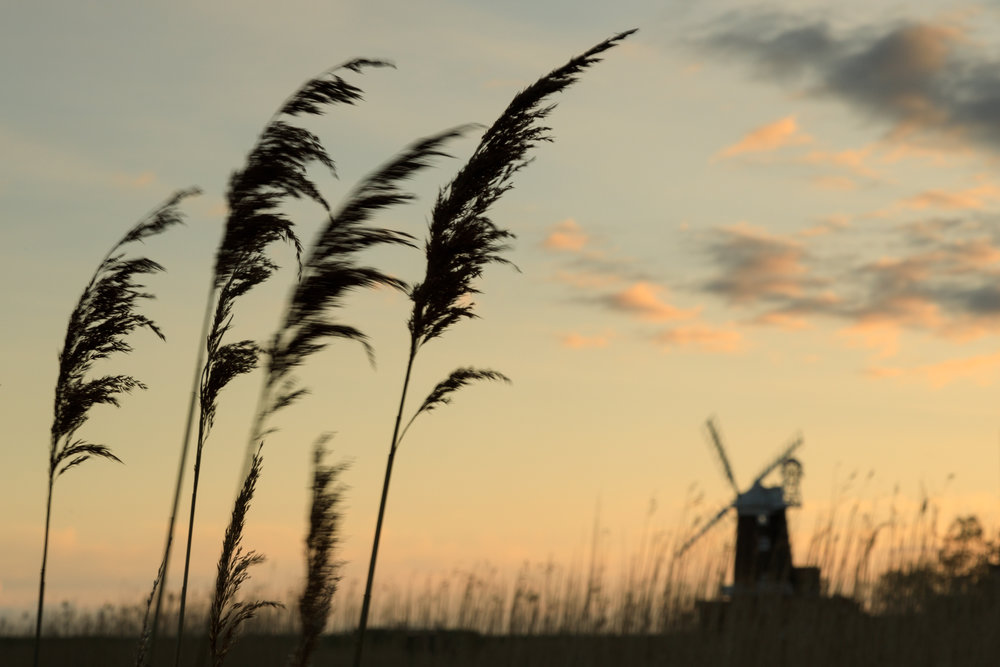 Silhouettes - Cley, Norfolk