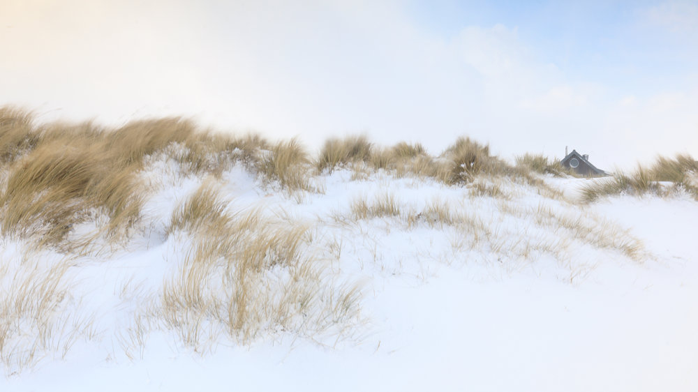 A dusting in the dunes - Southwold, Suffolk