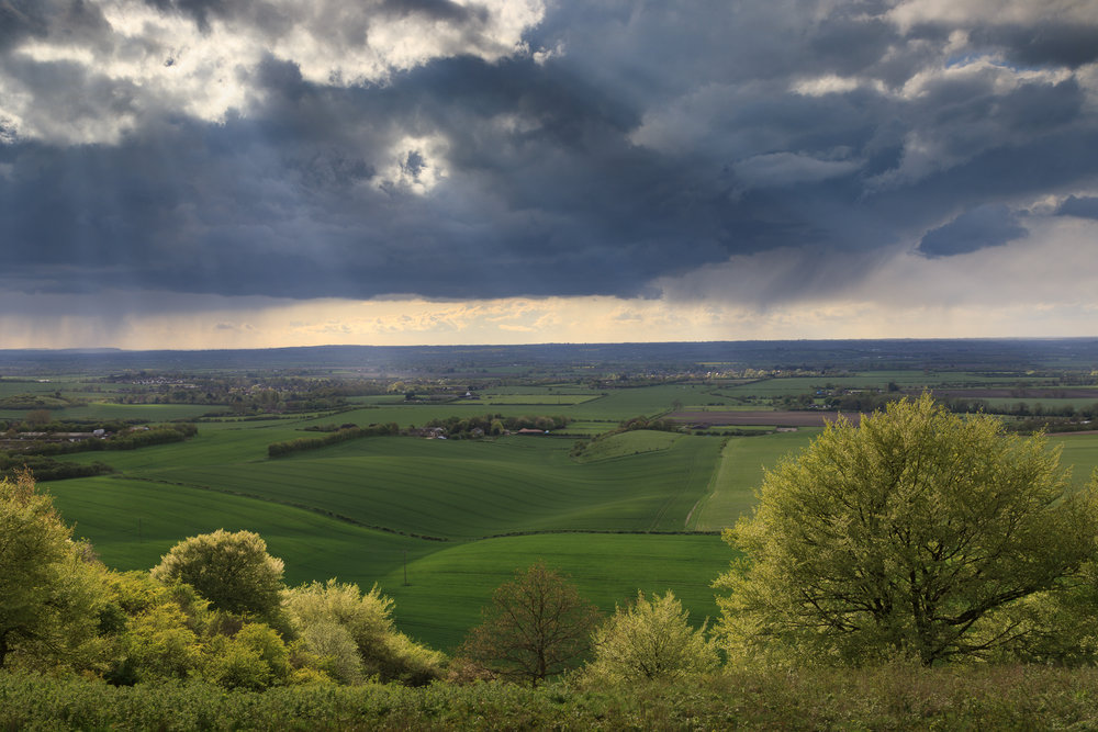 Spring at Dunstable Downs, Bedfordshire