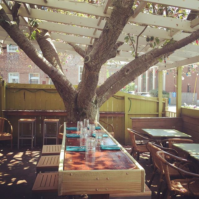 Trees in bloom and the patio is officially open! #letthepetalsfallwheretheymay #alfresco #perrosaladonewport  #springhasarrived