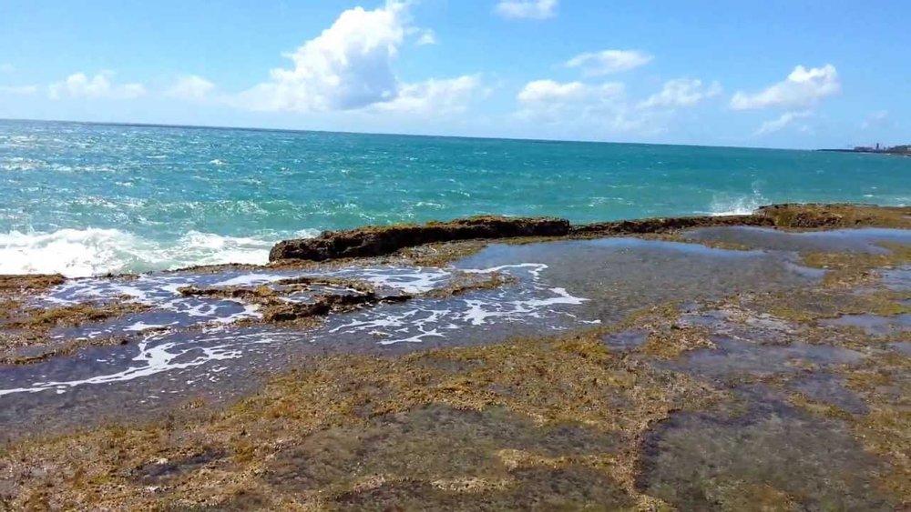 praia dos artistas - Natal - RN5,9 quilômetros do alojamento.