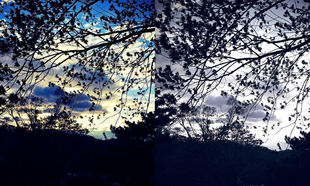 Collage_Fotoras11223.jpg