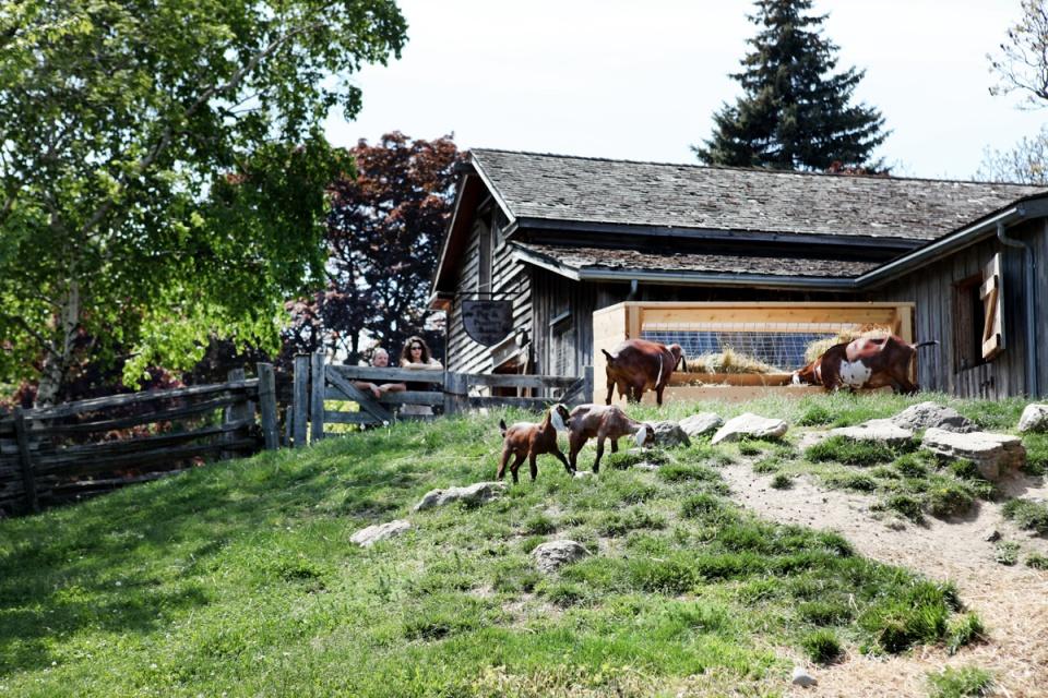 The-Riverdale-farm.JPG