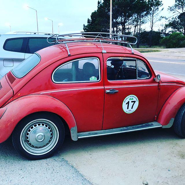 Uruguayan Rally Bug