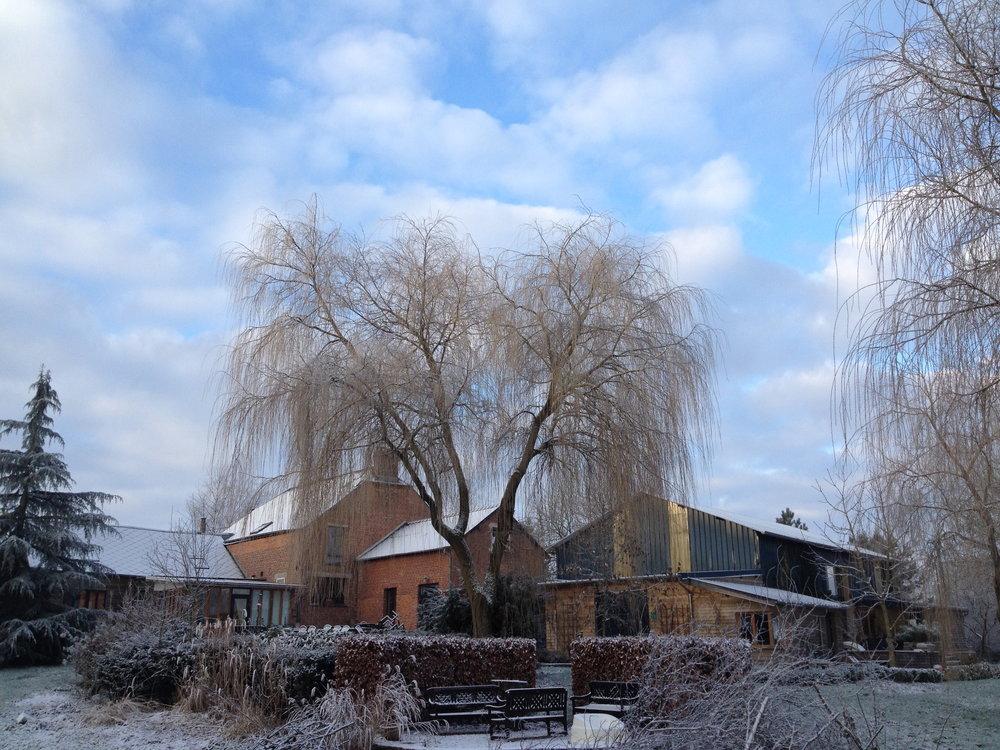 winter overzicht vanuit de tuin.jpg