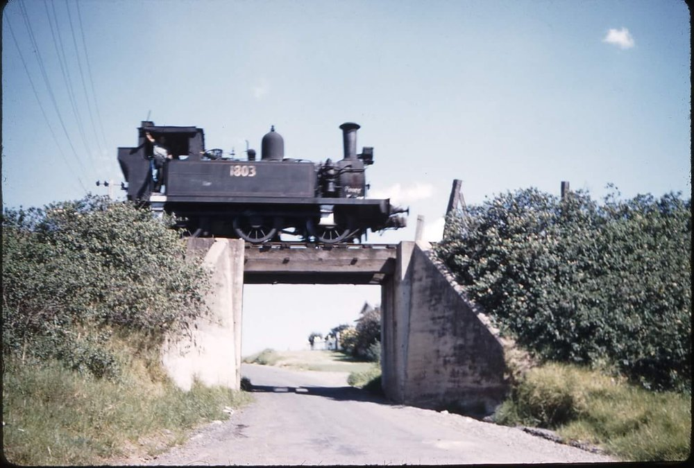 Steam loco 1803 crossing the Foleys Road overpass bridge (near present day Throsby Drive roundabout) on the Mount Keira Colliery railway in the early 1950s - from Weston Langford collection.