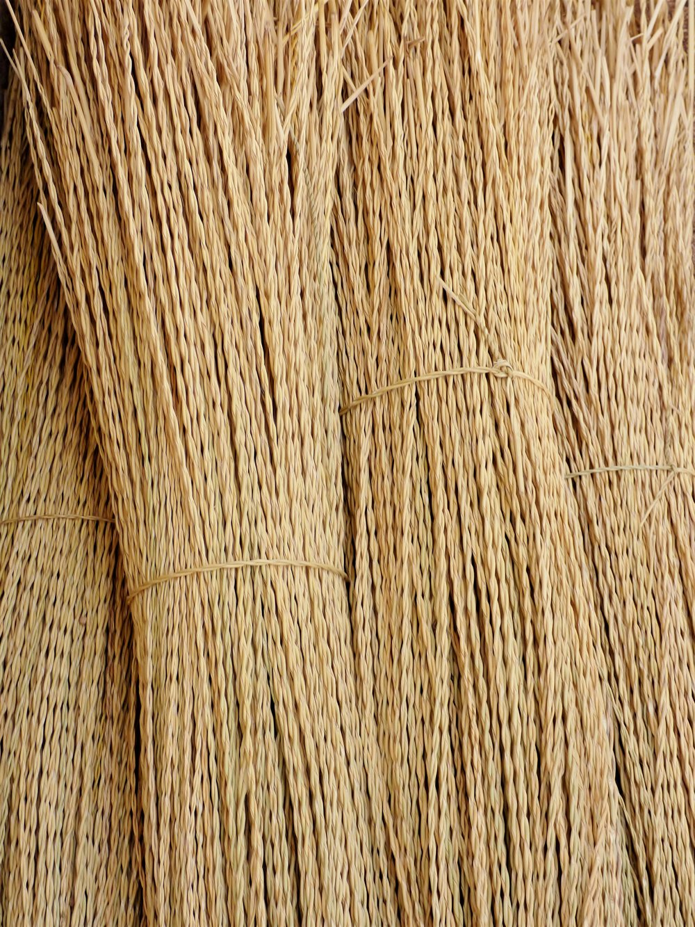Twisted elephant grass ready for weaving.