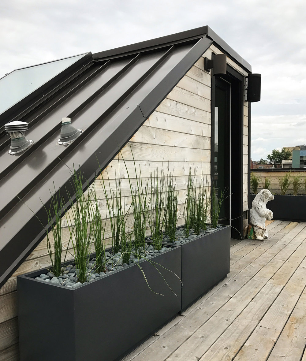 LOCH COLLECTIVE_LANDSCAPE ARCHITECTURE__BLAGDEN ROOF DITTO RESIDENTIAL_01.jpg