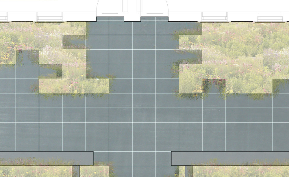 LOCH COLLECTIVE_LANDSCAPE ARCHITECTURE__WATKINS ALLEY DITTO RESIDENTIAL_11.jpg
