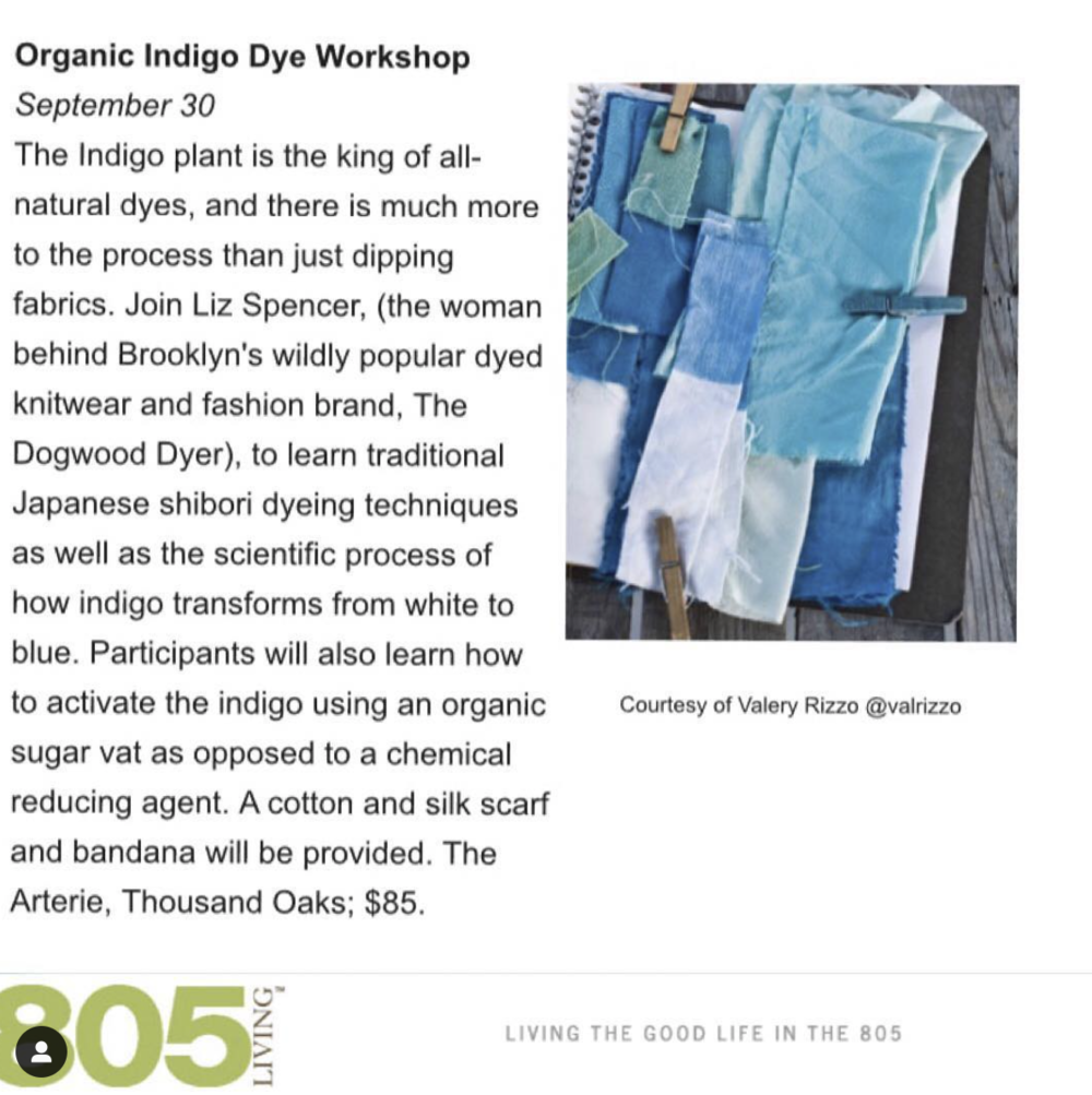 805 Living   Natural Dye Workshop at The Arterie with The Dogwood Dyer.