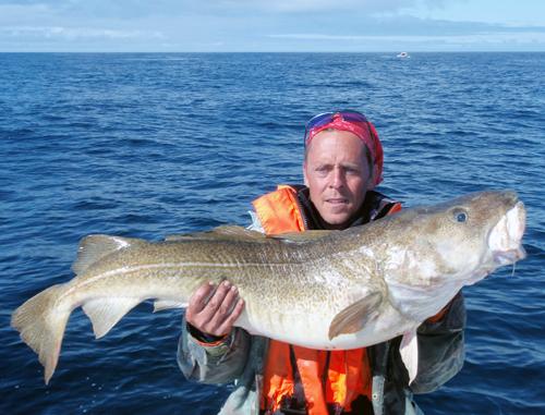 Torsk 20,5 kg, Sørøya, Norge