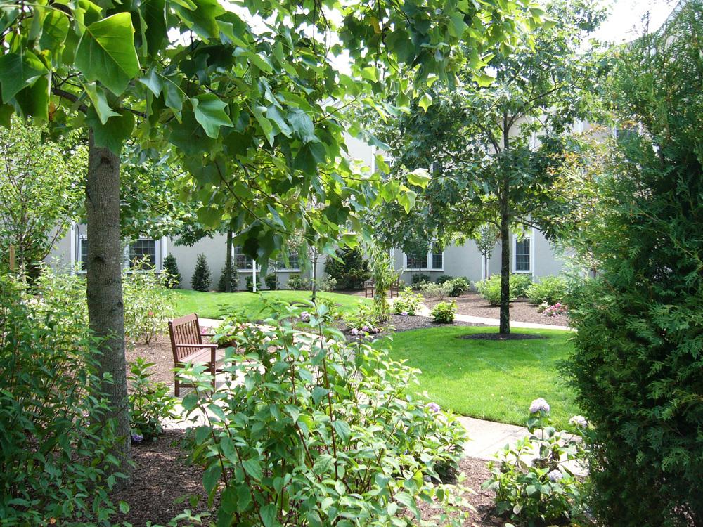 Garden+2.jpg