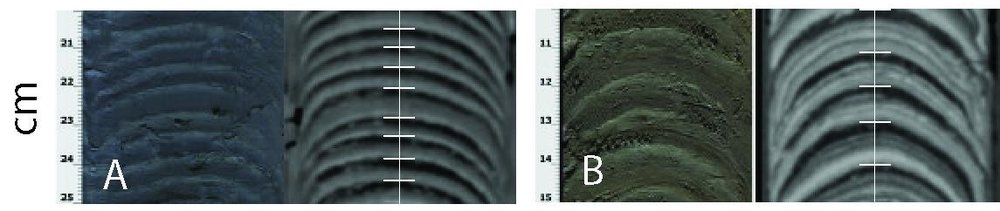 Typical examples of varve and turbidites facies at Eklutna Lake.  A and B: 5 cm long linescan images on the left panels and Ct-Scans topograms on the right of typical varve sequences.  The coarse grain unit appears dark on the digital photograph and pale on the topograms and inversely for the clay cap. The vertical white line represent the axis along which the varve thickness is measured and white horizontal lines represent varve boundaries as defined for the varve count. A: Simple varve unit composed of two couplets. B: Varve composed of more than one sub-annual unit of coarse sediments.