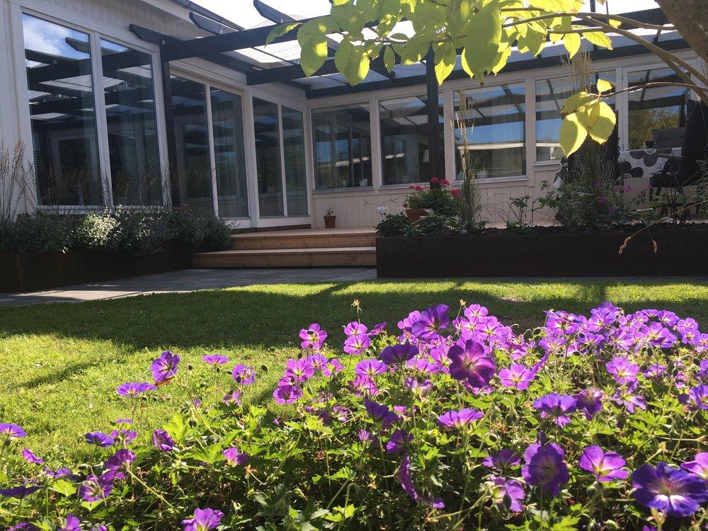 """Efter. Den """"nya"""" trädgården är två månader gammal som trots en torr sommar grönskar det fantastiskt"""