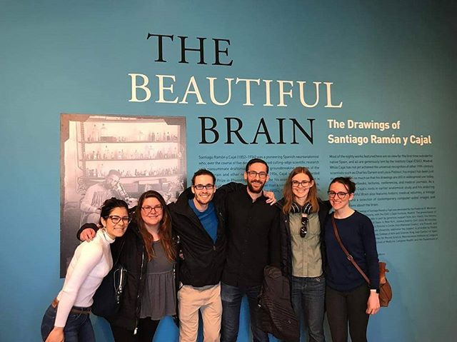 This past weekend some of our NGG students ventured to the @nyugrey to admire the astonishing drawings of Santiago Ramón y Cajal at the Beautiful Brain exhibit.