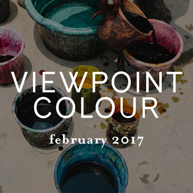 VIEWPOINT-Feb-2017.jpg