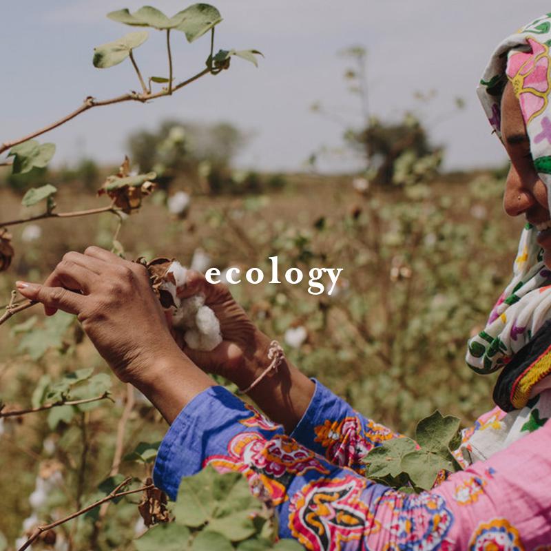 ecology1.jpg