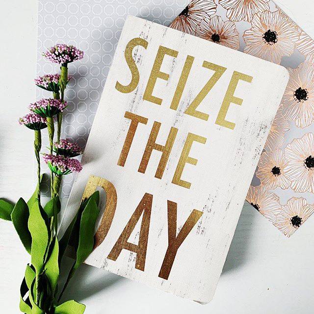 Working at home today due to weather ... all the snow has colors washed out a bit, but Spring is soooo close now!  #snowday #workathome #seizetheday #gold #stationaryaddict  #journal #comeonspring