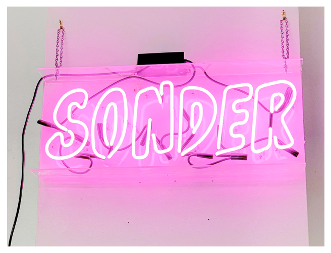 """ 'Sonder' is Shedding Light On What it's Like to be a Teen in 2019"" - Elizabeth Donohue 