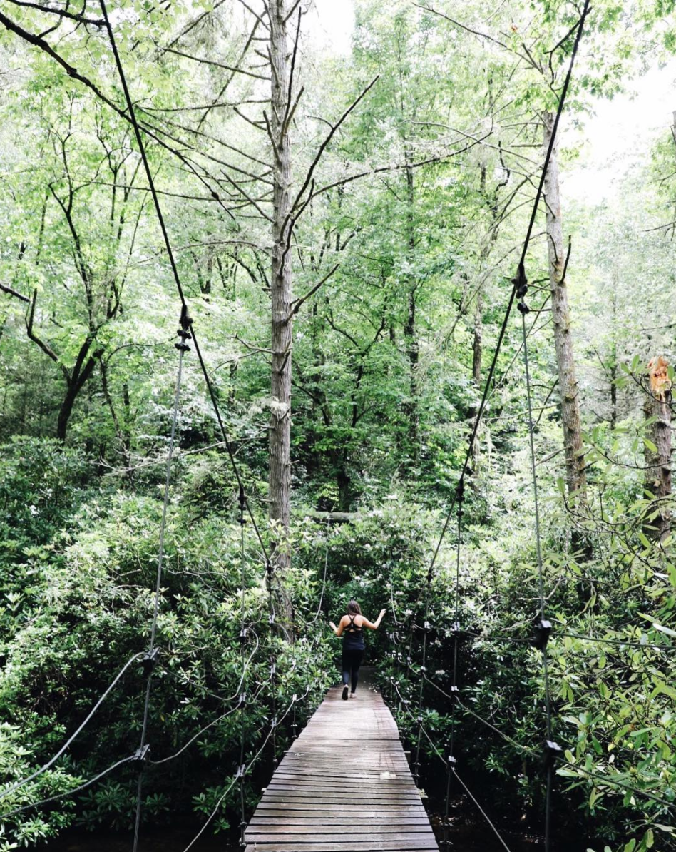 pisgah national forest mills river suspension bridge
