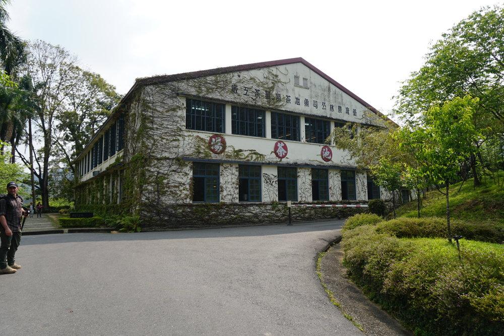 Antique Assam Tea Farm in the Sun Moon Lake Area