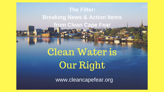 THE FILTER -- A CLEAN CAPE FEAR BLOG