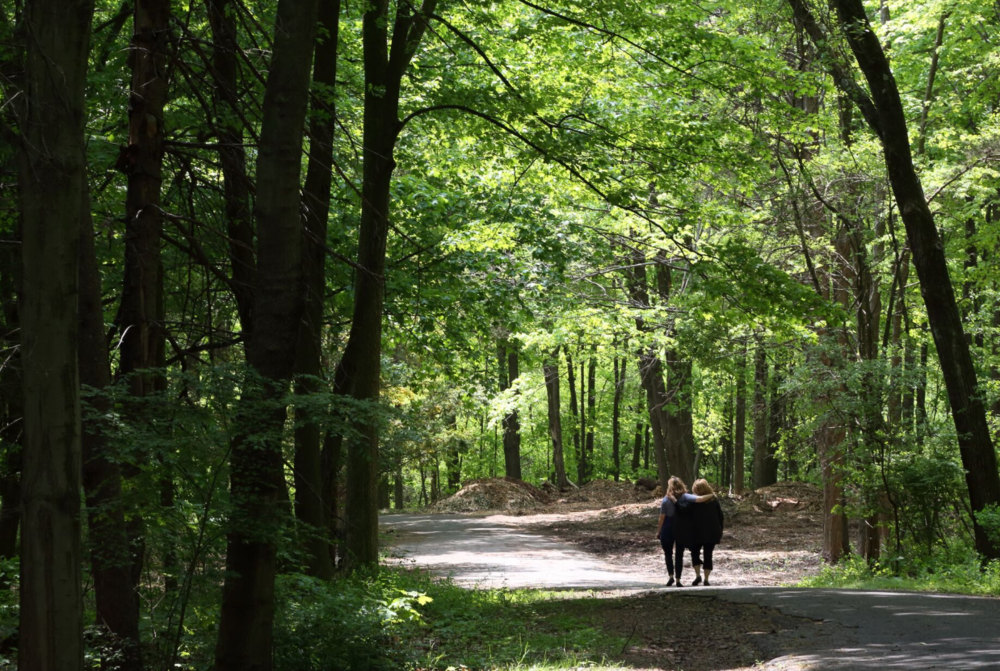 Women walking down path