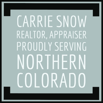 Fort Collins Real Estate Agent, Appraiser | Carrie Snow, RE/MAX Advanced Inc