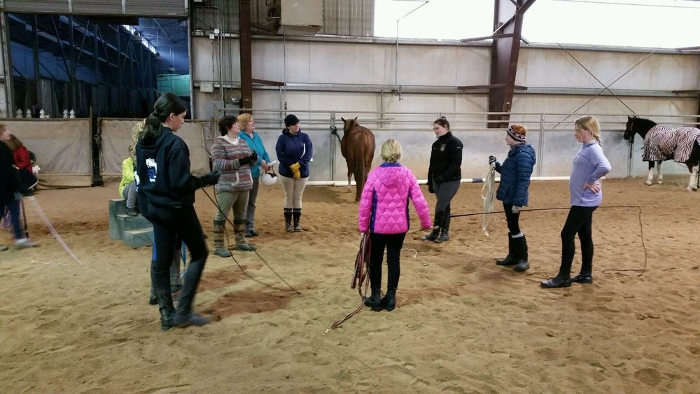 Lunging-Clinic-1.jpg