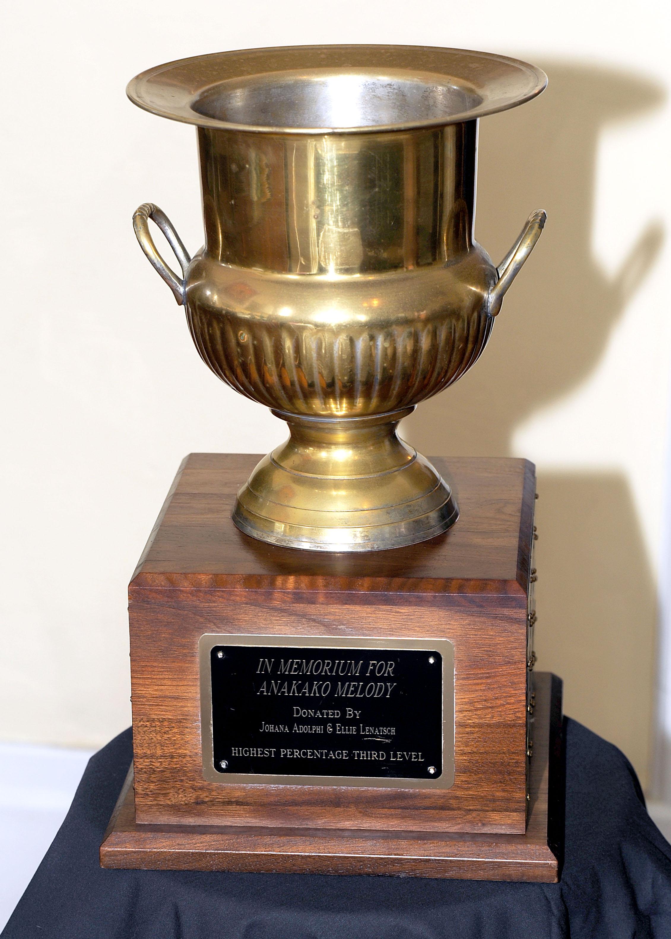 Perpetual Award - Third Level