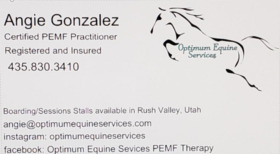 Optimum Equine Services