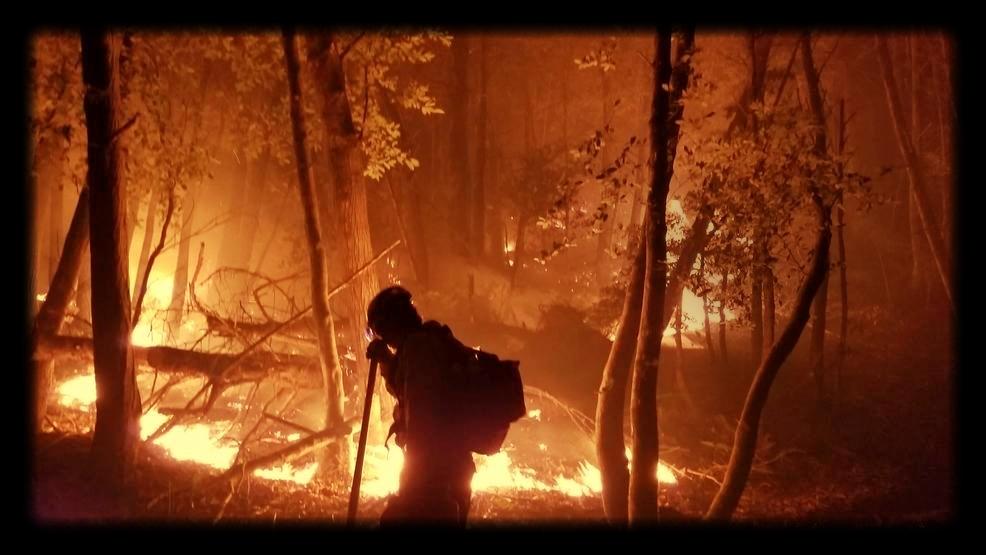 Chetco Fire - 1 of 10.jpg