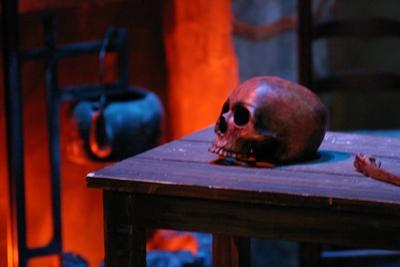 Skull in Connemara [2005]