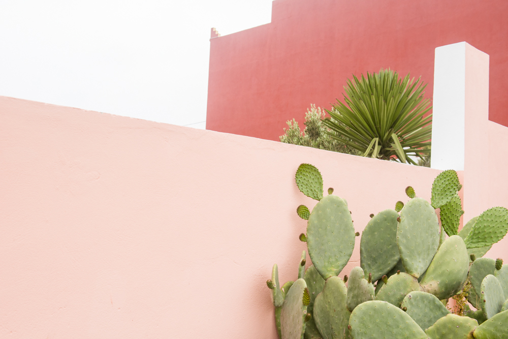 Web_Morocco_18.jpg