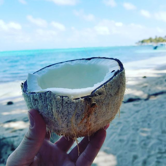 I finally went off the grid! My vacation felt like carribian summer camp: scuba diving, bird watching, kayaking, coconut-tree climbing, spear fishing, and skin diving for crabs! We cooked what we caught and spent down time reading under the palm trees. Heaven!
